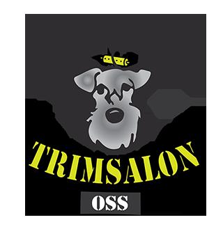Honden-Trimsalon-Oss-Dark-Web